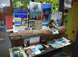 Daintree tour bookings