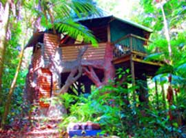 Unique self contained Daintree accommodation