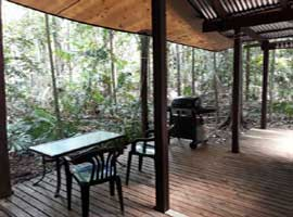 daintree accommodation in the rain forest
